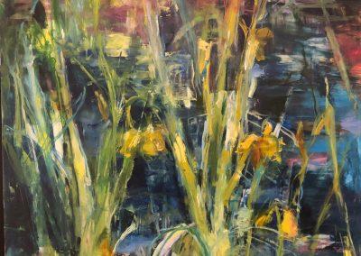 Iris Pond